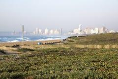Paesaggio di riabilitazione della duna che ha luogo a fronte mare Immagine Stock Libera da Diritti