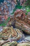 Paesaggio di Rocky Mountains in Spagna Fotografia Stock
