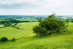 Paesaggio di rotolamento della parte centrale inglese di estate Immagini Stock