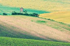 Paesaggio di rotolamento di Moravian con la baracca fotografia stock