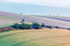 Paesaggio di rotolamento di Moravian con la torre di caccia Immagine Stock