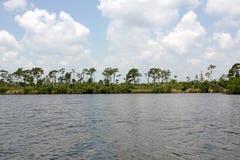 Paesaggio di scambio della Florida Fotografia Stock Libera da Diritti