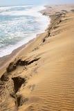 Paesaggio di scheletro della costa Fotografie Stock