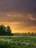 Paesaggio di sera Fotografia Stock Libera da Diritti