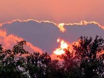 Paesaggio 2015 di sera di Darlington Park Fotografia Stock Libera da Diritti