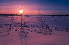 Paesaggio di sera di inverno con l'alone Immagine Stock