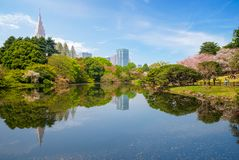 Paesaggio di Shinjuku Gyoen con il fiore di ciliegia Immagini Stock Libere da Diritti