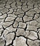 Paesaggio di siccità Fotografia Stock Libera da Diritti