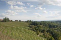 Paesaggio di Slovenske Gorice Immagini Stock