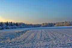 Paesaggio di Snowy Immagini Stock Libere da Diritti