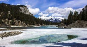 Paesaggio di Snowy in Banff, Alberta, Canada fotografia stock