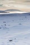 Paesaggio di Snowy con il lago nella distanza fotografia stock libera da diritti