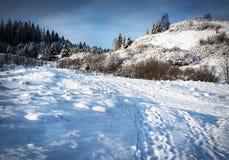 Paesaggio di Snowy con le colline Immagini Stock