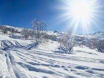 Paesaggio di Snowy con sole e gli alberi Immagini Stock