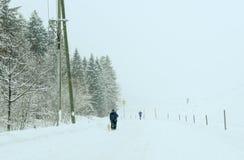 Paesaggio di Snowy a Engelberg sulle alpi svizzere Fotografia Stock Libera da Diritti