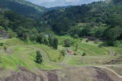 Paesaggio di Srilanakan Immagine Stock