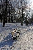 Paesaggio di stagione invernale in parco Fotografie Stock