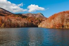 Paesaggio di stupore di autunno in Spagna Foresta e lago di Colourfull a Montseny, Catalogna fotografie stock libere da diritti