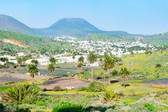 Paesaggio di stupore della valle di Haria, la valle di mille palme, Lanzarote, isole Canarie, Spagna immagini stock libere da diritti