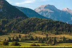 Paesaggio di stupore di Julian Alps di estate Immagini Stock