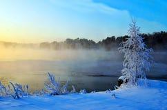 Paesaggio di Sun di inverno Fotografie Stock Libere da Diritti