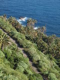 Paesaggio di Tenerife Fotografie Stock Libere da Diritti