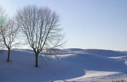 Paesaggio di terreno da golf Immagine Stock
