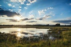 Paesaggio di tramonto di estate sopra le zone umide Immagine Stock
