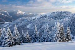 Paesaggio di tramonto di inverno fotografie stock libere da diritti