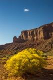 Paesaggio di U.S.A. di sud-ovest Fotografia Stock