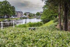 Paesaggio di un canale nella città di Alkmaar L'Olanda olandese fotografia stock libera da diritti