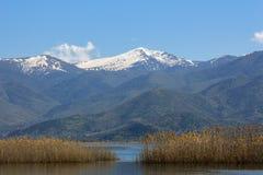 Paesaggio di un lago con le canne gialle ed i picchi di montagna innevati fotografia stock libera da diritti