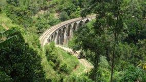 Paesaggio di un ponte ferroviario dentro la foresta fotografia stock
