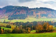 Paesaggio di una campagna con gli alberi di autunno in alpi Immagini Stock Libere da Diritti