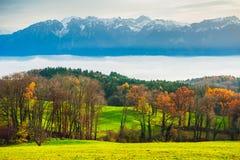 Paesaggio di una campagna con gli alberi e le alpi di autunno Immagini Stock
