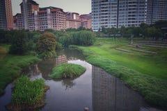 Paesaggio di verde Fotografia Stock