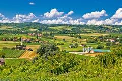 Paesaggio di verde del terreno coltivabile della campagna in Croazia Fotografie Stock Libere da Diritti