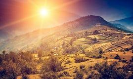 Paesaggio di viaggio della natura alla luce di tramonto Immagini Stock