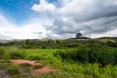 Paesaggio di viaggio - moutain della collina Fotografia Stock