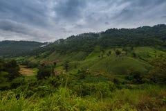 Paesaggio di viaggio - moutain della collina da Phu Soi Dao National Park Fotografie Stock