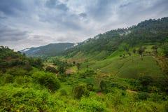 Paesaggio di viaggio - moutain della collina da Phu Soi Dao National Park Immagine Stock