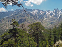 Paesaggio di vista dell'alta montagna con i picchi taglienti Immagini Stock Libere da Diritti