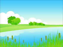 Paesaggio di waterside di estate. Immagine Stock Libera da Diritti