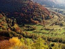 Paesaggio dorato della valle di ottobre in alpi sveve, Germania Fotografia Stock Libera da Diritti