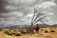 Paesaggio drammatico Fotografie Stock Libere da Diritti
