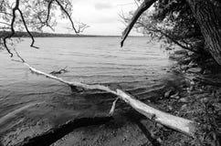Paesaggio drammatico del lago Fotografia Stock Libera da Diritti