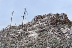 Paesaggio drammatico desolato: una collina coperta di ghiaccio immagine stock