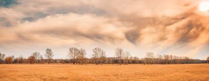 Paesaggio drammatico di inverno di autunno di panorama Cielo nuvoloso ed alberi senza foglie immagini stock