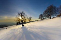 Paesaggio drammatico di tramonto di inverno con le ombre grandangolari del tiro dai rami di albero Immagine Stock