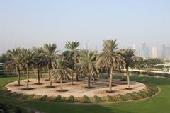 Paesaggio Dubai da un'oasi Fotografia Stock